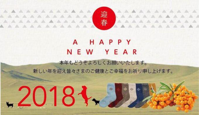 靴下2018